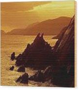 Dunmore Head, Dingle Peninsula, County Wood Print