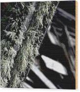 Dunraven Moss Wood Print