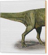 Duriavenator Hesperis, A Prehistoric Wood Print