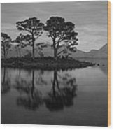 Dusk At Loch Maree Wood Print