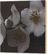 Dusk Blooms Wood Print