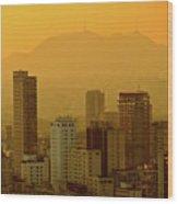 Dusk In Sao Paulo, Brazil Wood Print by Alex Joukowski