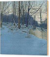 Dusk In The Woods Wood Print