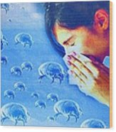 Dust Mite Allergy, Conceptual Artwork Wood Print by Hannah Gal