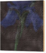 Dusty Iris Wood Print