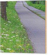 Dutch Bicycle Path - Digital Painting Wood Print by Carol Groenen
