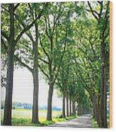 Dutch Country Road Wood Print