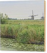 Dutch Landscape With Windmills And Cows Wood Print