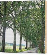 Dutch Road - Digital Painting Wood Print