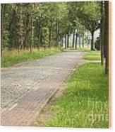 Dutch Road 2 Wood Print
