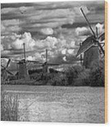 Dutch Windmills Wood Print