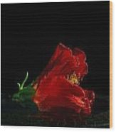 Dying Rose Wood Print