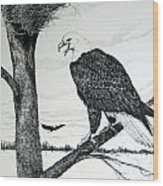 Eagle At Nest Wood Print