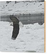 Eagle By River Wood Print