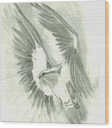 Eagle Flying High Wood Print