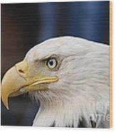 Eagle Head Wood Print