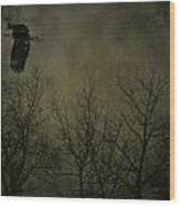 Eagle In The Mist  Wood Print