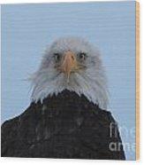 Eagle In The Wind Wood Print