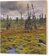 Eagle Plains, Yukon Territory, Canada Wood Print