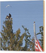 Eagle Rallies Round The Flagpole Wood Print