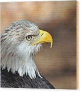 Eagle Right Wood Print