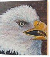 Eagle Study Wood Print