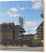 Eagles - The Linc Wood Print