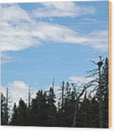 Eagles Nest Lake Tahoe Wood Print