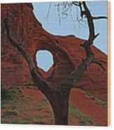 Ear Of The Wind Wood Print
