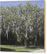 Ear Tree Wood Print