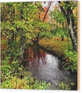 Early Autumn In Maine Wood Print