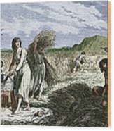 Early Humans Harvesting Crops Wood Print