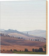 Early Morning In Tuscany Wood Print
