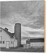 Early Morning On The Farm Bw Wood Print