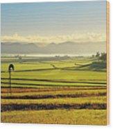 Early Morning Pastoral Scene With Keyline Plowing Near Warwick, Queensland, Australia Wood Print