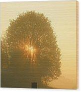 Early Morning Sunshine Wood Print