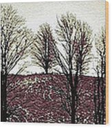 Early Morning Trees Wood Print by Miss Dawn