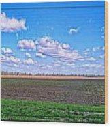 Early Spring Farmland Wood Print
