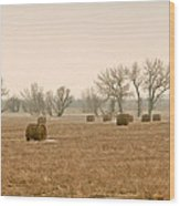 Earlying Morning Hay Bails Wood Print
