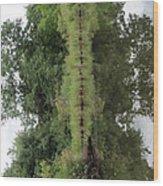 Earth Elephant Wood Print