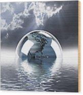 Earth Globe Reflection Wood Print