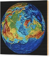 Earth: Topography Wood Print