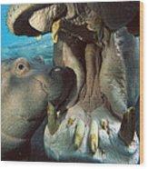 East African River Hippopotamus Wood Print
