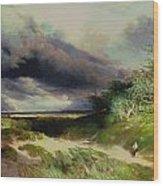 East Hamptonlong Island Sand Dunes Wood Print
