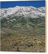 East Humboldt Range Wood Print