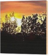 East Texas Sunset Wood Print