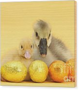 Easter Duckling And Gosling Wood Print