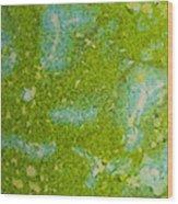 Easter Egg Green Macro 1 Wood Print