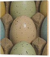 Easter Eggs Carton 1 A Wood Print