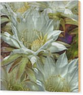Easter Lily Cactus Bouquet Hdr Wood Print